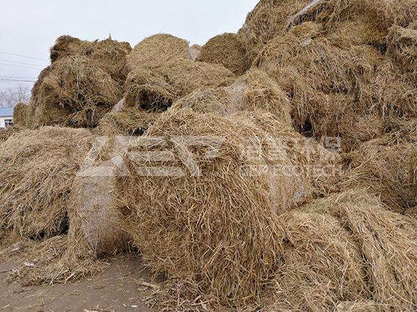La cogénération à base de biomasse est devenue une nouvelle tendance en matière d'élimination de la paille.